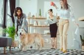boldog többnemzetiségű üzletasszonyok bolondozás körül a kutya-on Hivatal