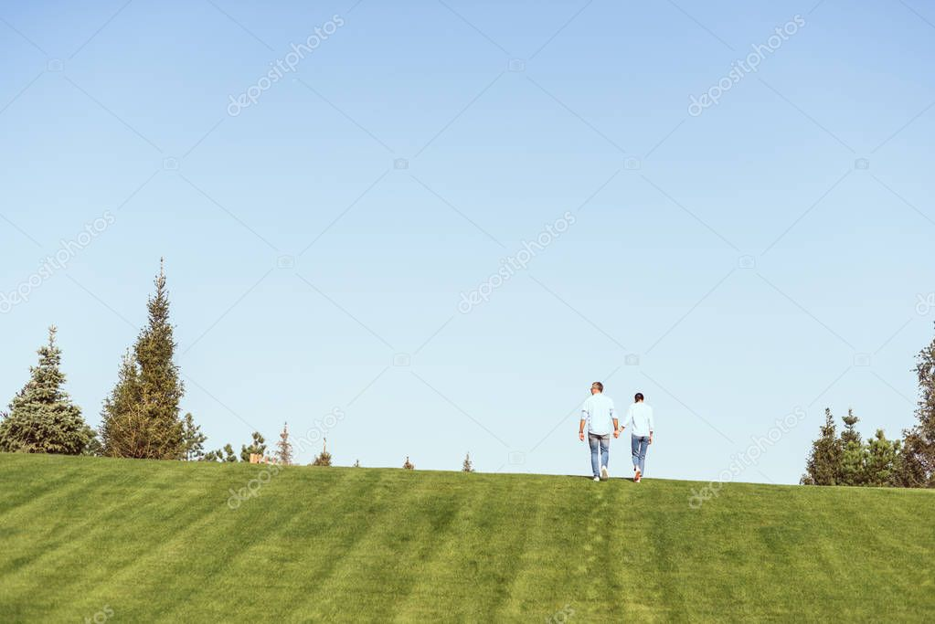 distant view of couple holding hands and walking on grassy hill outdoors