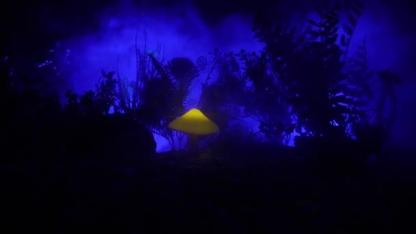 Zářící houby záhada temného lesa zblízka. Světýlka na pozadí s mlhou. Selektivní fokus