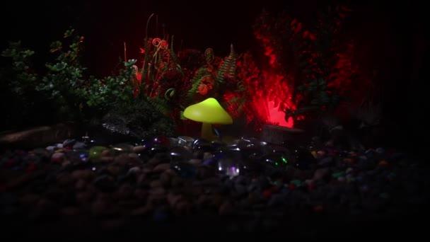 Izzó gomba rejtély sötét erdő közelről. Mesebeli fények, a háttérben a köd. Szelektív összpontosít