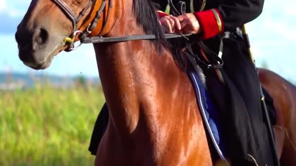 Kozák lovon, hagyományos jelmezben.