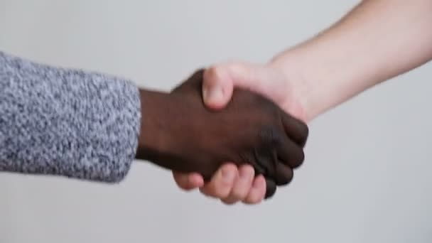 Hands of a mixed race businessmen shake hands while negotiating a new bargain