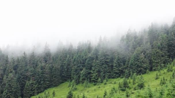 Carpatská hora pod zamračená obloha