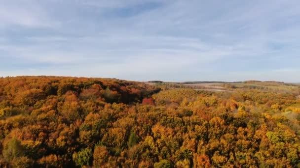 Let dronem přes podzimní les. Podzimní listí a stromy. Oranžová, červená, žlutá a zelená krásná scéna.