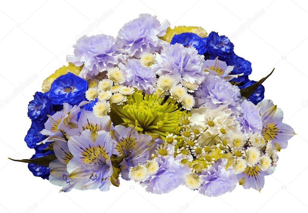 Bouquet of blue-violet-yellow-white flowers on an isolated white background with clipping path.  no shadows. Closeup. Roses cloves chrysanthemum chamomile lilies. Nature.