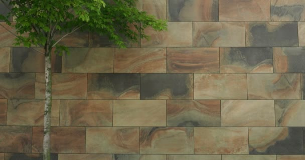 Wall covered with large decorative tiles, marbled marbles, can be used as a background, street, part of the crown of the green tree foliage standing nearby, space for text
