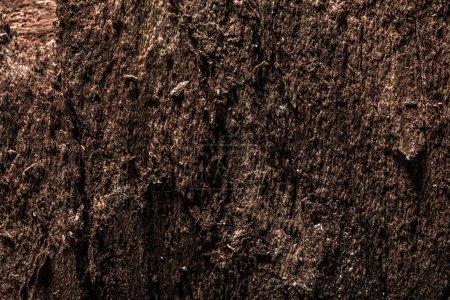 Antique brown obsolete wooden texture.