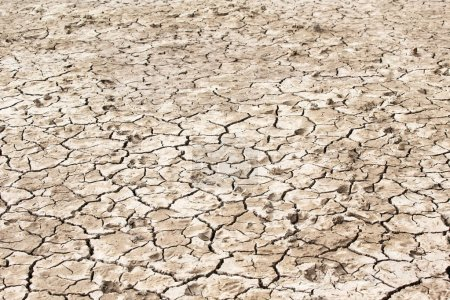 dry soil rough texture background
