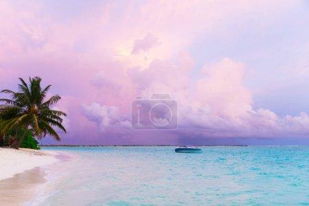 Photo pour Tropical island Maldives avec plage de sable blanc et mer - image libre de droit