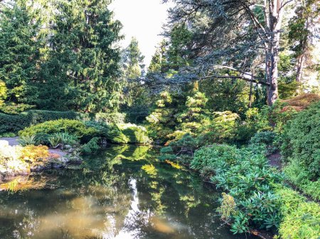 Photo for Kubota Garden is a 20-acre (81,000 m) Japanese garden in the Rainier Beach neighborhood of Seattle, Washington. Major features of the Kubota Garden include the Kubota Terrace, the Bamboo Grove, the Necklace of Ponds, the Mountainside, - Royalty Free Image