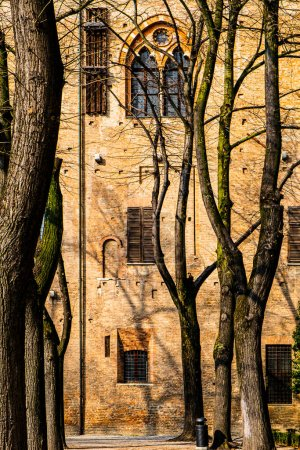 Whimsical shade of trees in the courtyard of the D...