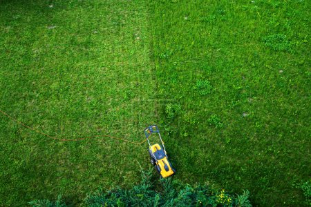 Photo for Lownmower on green lawn background - Royalty Free Image