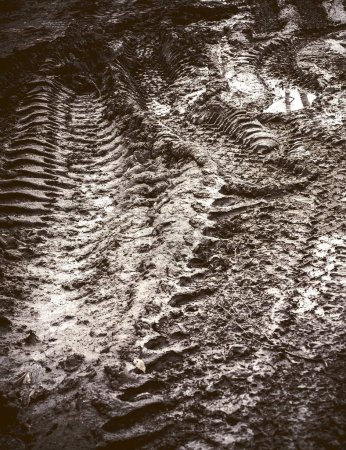 tyre tracks in the mud