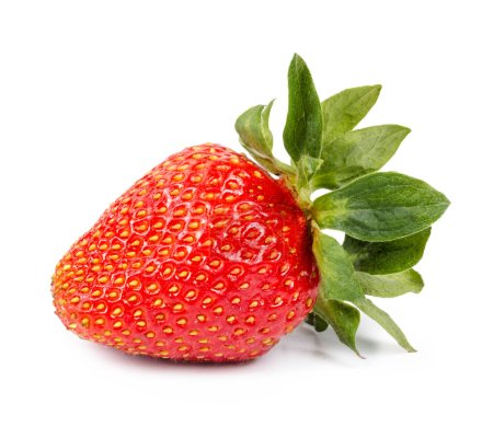 Red strawberry isolated on a white background