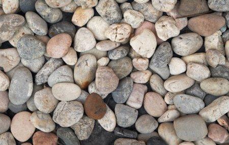 Photo pour Tas de cailloux. Nature fond et texture - image libre de droit