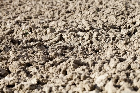 Photo for Soil texture background ready for cultivation. - Royalty Free Image