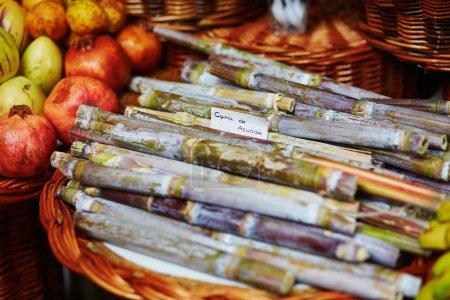Green sugar-canes on traditional farmer market Mercado dos Lavradores, Funchal, Madeira island, Portugal