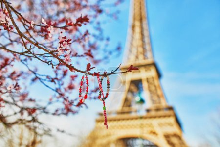Eiffel Tower with blooming cherry blossom spring t...