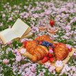 Beautiful picnic with rose wine, French croissants...