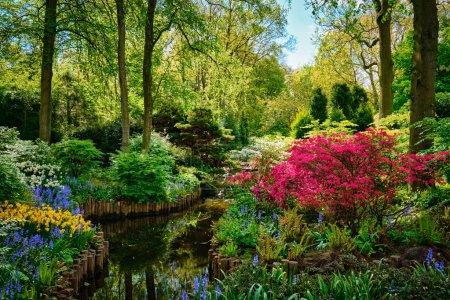 Photo pour Jardin fleuri de Keukenhof, également connu sous le nom de Jardin de l'Europe. Un des plus grands jardins fleuris du monde. Lisse, Pays-Bas . - image libre de droit