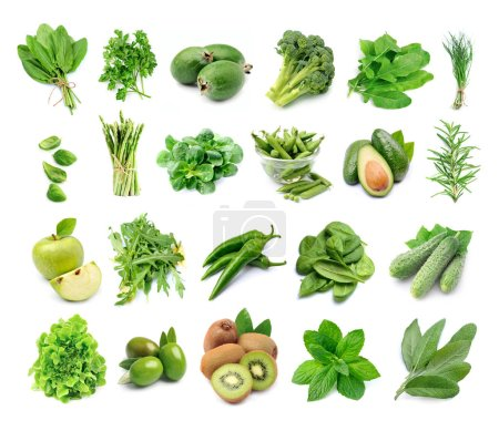 Photo for Set of fresh green vegetables isolated on white backgrounds. - Royalty Free Image
