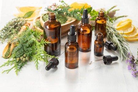 Photo pour Bouteilles d'huiles essentielles. Médecine par les plantes. Aromathérapie. - image libre de droit