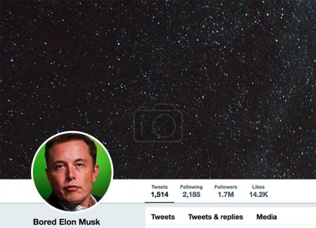 Twitter page for Elon Musk