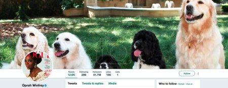 Twitter page for Oprah Winfrey
