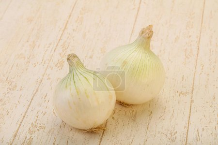 White ripe sweet onion vegetable isolated