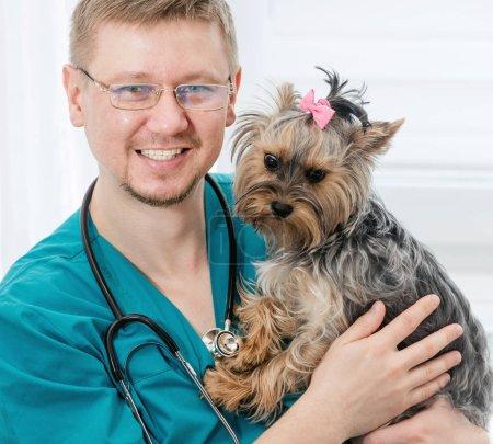 Portrait of smiling veterinarian in glasses holdin...
