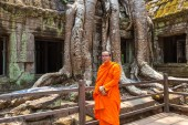 SIEM REAP, CAMBODIA - JUNE 11, 2018: Buddhist monk at Ta Prohm temple ruins is Khmer ancient temple in complex Angkor Wat in Siem Reap, Cambodia