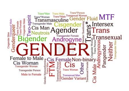 Photo pour Gender Word Tag Cloud, montre les mots liés aux options d'identification sexuelle et concepts similaires, vecteur ESP1 - image libre de droit
