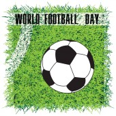Soccer ball on the field with a marking - World Football Day