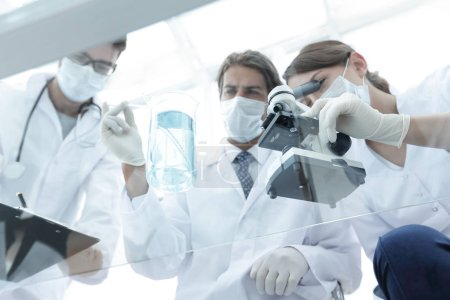 scientists conducting research in a lab environment