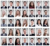 collage of portraits of successful young businessmen