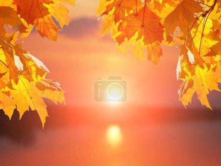 Photo pour Branches avec feuilles d'érable d'automne et fond flou avec lac et arbres contre ciel avec coucher du soleil - image libre de droit