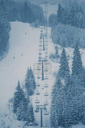 Snowy winter forest in Carpathian mountains...