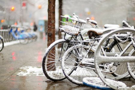 Photo for Row of old bicycles covered with snow after massive snowfall in New York City - Royalty Free Image