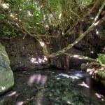 The famous mythological site - Baths of Aphrodite ...