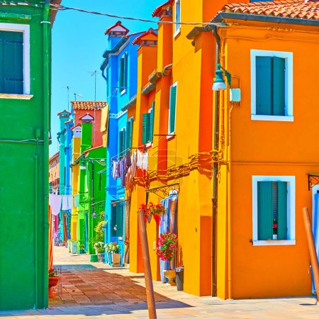 Photo for Street with vivid colored houses in Burano Island, Venice, Italy - Royalty Free Image