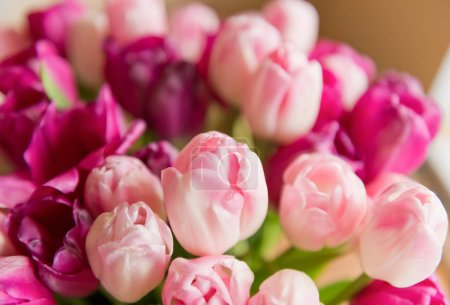 A bouquet of pink tulips in a vase.