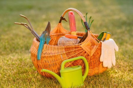 Gardening tools in wicker basket and watering can on grass