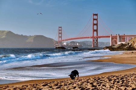 Golden Gate Bridge view from