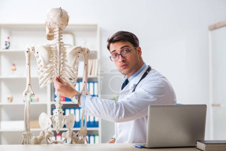Photo for Yong male doctor with skeleton isolated on white - Royalty Free Image
