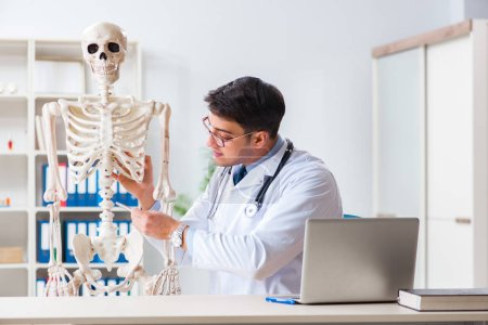 Yong male doctor with skeleton isolated on white