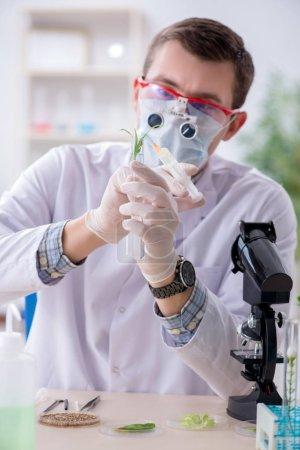 Männlicher Biochemiker arbeitet im Labor an Pflanzen