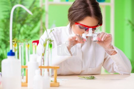 Photo for Beautiful female biotechnology scientist chemist working in lab - Royalty Free Image