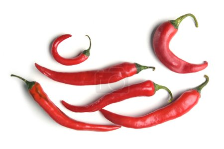 Composition of whole red chilli peppers isolated on white background