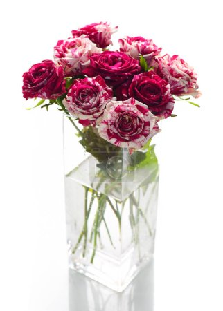 Fresh bouquet of motley pink roses in glass vase isolated on white background