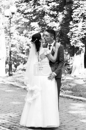 Monochrome view of wedding couple kissing outdoor